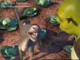Çorumlu Shrek