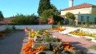Karakrtlu Selo Çiçekler