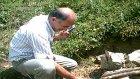 Aksu Köyü Derneği Fazlı Akcan