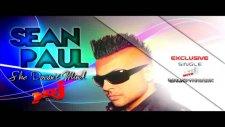 Sean Paul - She Doesn't Mind 2011