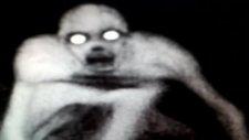 Louısıana Monster