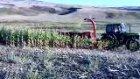 Urallar Çiftliği- Çatalca
