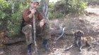 eskişehir tavşan avı