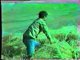 Sivas Kangal Bektaş Köyü 1987 4 Bölüm