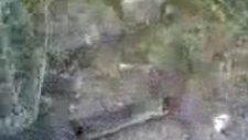 Erzurumda Öldürülen 11 Metrelik Dev Yılan!