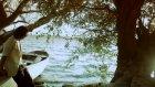 Fettah Can Sana Affetmek Yakışır 2011 Orjinal Video Klip /facebook/damarabesc1