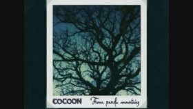 Cocoon - Tell Me - From Panda Mountains