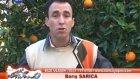 barışla türkiye'nin sesi-antalya gündoğmuş 2011