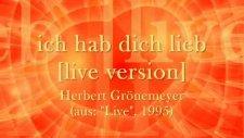İch Hab Dich Lieb [live Version] - Herbert Grönemeyer