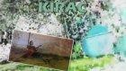 Kıraç Dönemem 2011 Videomıx