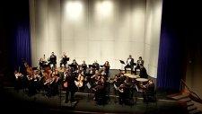 Ludwig Van Beethoven Allegro Con Brio