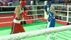 2011 boks