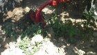 sevsantarım makinaları bağ ve bahçe tipi çapalama makinası