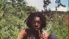 Peter Tosh African