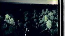 Mor Ve Ötesi - Sevda Çiçeği