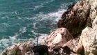 sargoz avı kıyıcı