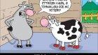 komik karikatürler 6
