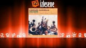 Fanfare Ciocarlia - Banatzeana