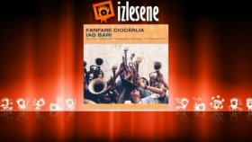 Fanfare Ciocarlia - Wild Silence ( With Dan Armeanca )