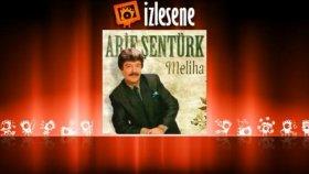 Arif Şentürk - Roka Mandolina