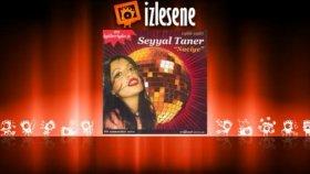 Seyyal Taner - Ayrılık Şarkısı
