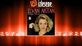 Elvan Aktan - Ben Geldim Desen