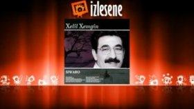 Xelil Xemgin - Amed