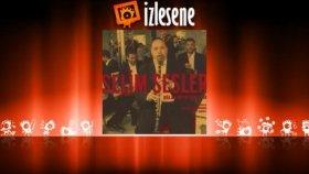 Selim Sesler - Gözyaşı