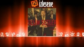 Selim Sesler - Melodik Sesler