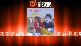 Fevzi Temelli - Sakl
