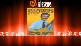 Aşık Murat Boydaş - Dostlarımdan Ayrı Kaldım