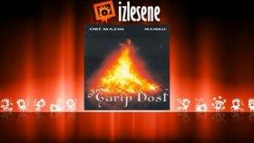 Garip Dost - Hüsne Cane