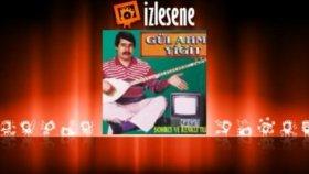 Gül Ahmet Yiğit - Meyrik