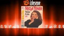Necla  Yener - Neler Ettin