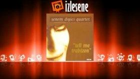 Senem Diyici Quartet - Trabizon