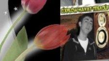 Cixflow Hayat Tesadüf/çaresizim Anam