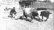 Hiç Bir Yerde Yok Tamamen Orjinal Ege Türküsü Şerfem