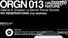 Gabriel  Dresden Vs Secret Panda Society - No Reservations D Wayne Remix