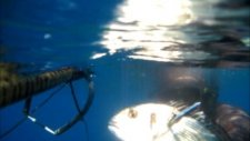 Zıpkınla Çupra Avı - Spearfishing,pescasub,brema,orata