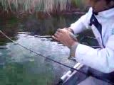 oltacılar balık bırakma2