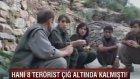 Hani 8 Terörist Çığ Altında Kalmıştı!