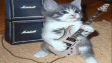 kemal sunal yaylalar komik kediler