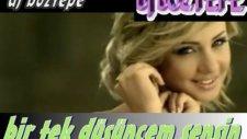 Dj Boztepe Bir Tek Düşüncem Sensin 2012