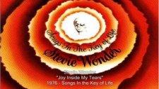 Stevie Wonder - Joy İnside My Tears
