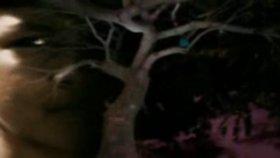 Deep Forest - Madazulu