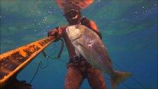 zıpkınla balık avı- çupra-sinarit 6.5 kg