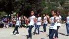 Müzikli dans gösterisi