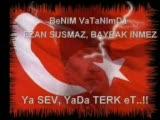 Milliyetçi , Türkçü Atatürk