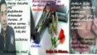 azer bülbül-asi-serseri