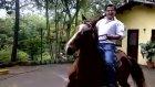 At'a Yanlış Binmek